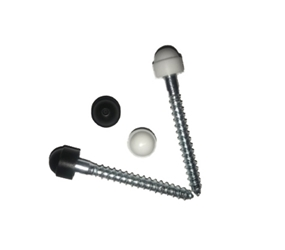 M6COACHSCREW2 - M6 Coach Bolt - 50mm Long - c/w Coloured Cap (For Round Aluminium Sockets & Pipe Clips)