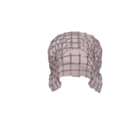 LEAF/40 - (CI) - 100mm LEAF GUARD - Galvanised Wire Ballon